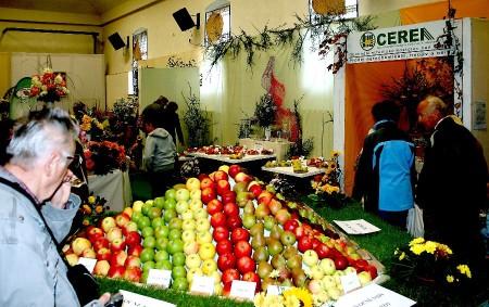 """ČASTOLOVICE – Častolovičtí zahrádkáři pořádají nejen jarní výstavu, která se uskutečňuje pod názvem Velikonoce – svátky jara týden před Velikonocemi, podzimní výstavu vprvním týdnu měsíce října, ale idalší akce. Nanedávné<a class=""""moretag"""" href=""""http://www.orlickytydenik.cz/prakticka-ukazka-zimniho-rezu-ovocnych-stromu-se-uskutecni-22-unora-od-9-hodin-v-zahradkarske-osade-bela-1-v-castolovicich-proti-zamku/"""">...celý článek</a>"""