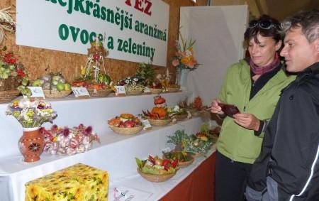 """Osmnáctá zahrádkářská výstava s názvem Zahrada východních Čech se v Častolovicích letos koná od 6. do 9. října. ČASTOLOVICE – Ve výstavním areálu, to je v sokolovně, v zahrádkářském domě,<a class=""""moretag"""" href=""""http://www.orlickytydenik.cz/zahrada-vychodnich-cech-2/"""">...celý článek</a>"""