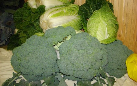 """Vitaminy a minerály obsažené v zelenině potřebuje náš organismus celý rok, pomáhají ale i v boji s jarní únavou. Významnou roli hraje u zeleniny i obsah vlákniny, která slouží dobrému<a class=""""moretag"""" href=""""http://www.orlickytydenik.cz/kucharka-zeleninova/"""">...celý článek</a>"""