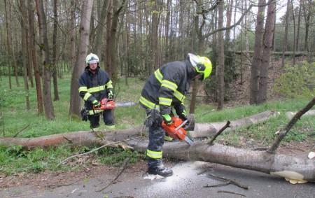 """RYCHNOVSKO – Vpondělí odpoledne odstraňovali hasiči na Rychnovsku především následky bouře, která ale škodila hlavně na Hradecku. Na Rychnovsku odstraňovali spadlé stromy ze silnice vPřepychách, vLípě nad Orlicí, v části<a class=""""moretag"""" href=""""http://www.orlickytydenik.cz/boure-lamala-stromy/"""">...celý článek</a>"""