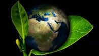 """REGION – Hodina Země 2018 – celosvětová událost na ochranu životního prostředí a zejména klimatu se odehraje v sobotu 24. března od 20.30 do 21.30 hodin. Tradičně se zapojují města<a class=""""moretag"""" href=""""http://www.orlickytydenik.cz/hodina-zeme-2018/"""">...celý článek</a>"""