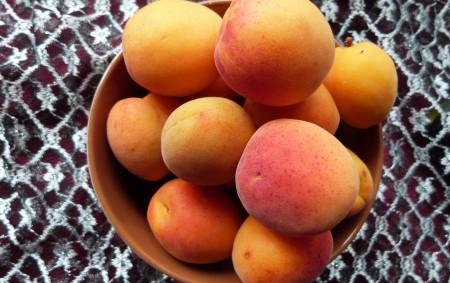 """Meruňky patří mezi nejzdravější ovoce – jsou výborným zdrojem železa a dalších prvků, například křemíku a draslíku. Důležitý je také obsah vlákniny. Z vitaminů je důležitý obsah provitaminu A, který<a class=""""moretag"""" href=""""http://www.orlickytydenik.cz/podorlicka-kucharka-merunky/"""">...celý článek</a>"""