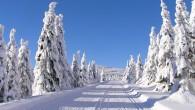 ORLICKÉ HORY – Hitem letošní zimní sezony se podle dat turistické aplikace Mapy.cz staly běžky. Od prosince 2017 do února 2018 si totiž lidé naplánovali téměř 1,5 milionu kilometrů běžeckých