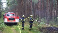 TÝNIŠTĚ N. O. – V pondělí krátce před 18. hodinou byl ohlášen požár lesního porostu u písníku nedaleko silnice z Týniště na Rašovice – na místo vyjeli společně s profesionálními