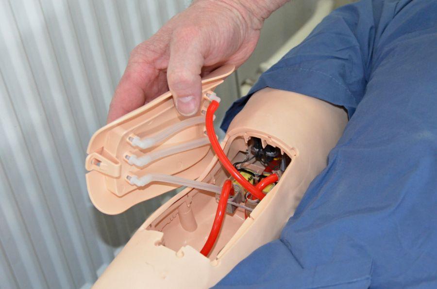 Hi-Tec výukové modely (3) - trenažery mají v sobě zabudovaný i žilný systém