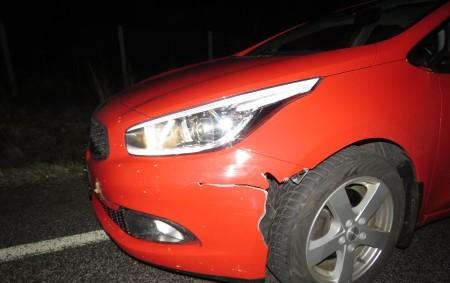 """RYCHNOVSKO -Hlídka dopravních policistů vyjížděla vzávěru rokuk dopravním nehodám, při kterých se srny střetly s osobními auty. V prvním případě policisté z rychnovské skupiny dopravních nehod vyšetřovali událost na silnici<a class=""""moretag"""" href=""""http://www.orlickytydenik.cz/srny-pod-koly-aut-strety-se-zveri-temer-kazdy-den/"""">...celý článek</a>"""