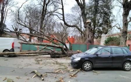 """REGION – Od pondělních 15.00 do 18.30 hodin přijalo krajské operační středisko hasičů hlášení asi o třicítce událostí, které zapříčinil silný vítr, který škodil i na Rychnovsku. V katastru Týniště<a class=""""moretag"""" href=""""http://www.orlickytydenik.cz/silny-vitr-pridelal-hasicum-praci/"""">...celý článek</a>"""