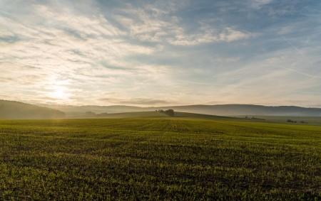 """KRAJ – Na zemědělskou půdu bylo použito přes 640 tun neupravených čistírenských kalů. Inspektoři z České inspekce životního prostředí (ČIŽP), Oblastního inspektorátu v Hradci Králové, uložili pokutu 125 tisíc korun<a class=""""moretag"""" href=""""http://www.orlickytydenik.cz/na-zemedelskou-pudu-byly-pouzity-tuny-neupravenych-kalu/"""">...celý článek</a>"""