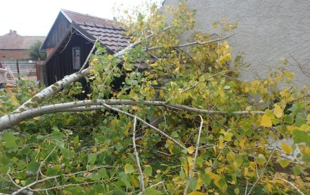 """REGION – Vlivem velmi silného větru se zvýšila během posledního zářijového pondělí poruchovost vPardubickém kraji zdopoledních 3 poruch na vedení vysokého napětí k16 hodině na 24 – především na Svitavsku,<a class=""""moretag"""" href=""""http://www.orlickytydenik.cz/energetici-meli-plno-prace-i-na-rychnovsku/"""">...celý článek</a>"""