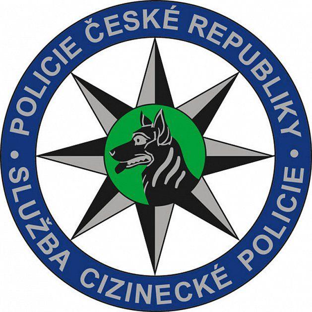 pohovor-na-cizinecké-policii-obrázek