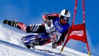 DOBRUŠKA - Z historie je známo, že čeští skibobisté obsazují pravidelně stupně vítězů jak na závodech Světového poháru, tak i na mistrovství světa. Ovšem sezona 2018–2019 se zapíše tučným
