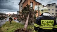 HRADEC KRÁLOVÉ – Vichřice Sabine vminulých dnech v lesích spravovaných Lesy ČR poškodila asi 950 tisíc metrů krychlových dříví. Nejvíc zasáhla jihočeské lesy, také Vysočinu a Plzeňský kraj. Podnik škody