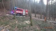 LIBERK – Kohlášenému požáru vlesním porostu vkatastru části Liberk vyjelo vneděli 5. dubna večer šest jednotek hasičů. Hořelo vtěžko přístupném terénu, na ploše asi 500×700 m se nacházela jednotlivá ohniska.