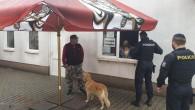 KRAJ – V Královéhradeckém kraji byly posíleny pravidelné hlídky o desítky policistů, kteří se budou ve větší míře zaměřovat na kontroly dodržování vládních opatření, zavedených vzhledem k nepříznivému vývoji šíření
