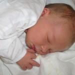 18.8. 2012 20:20 - Alžběta Sršňová