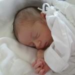 18. 5. 2012 12:47 - Amálie Švachová