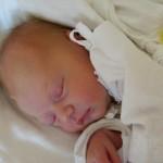 17.10.2012 8:46 – Michaela Kotková