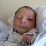 20.10.2012 14:51 – Roman Grajcar