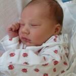 16.10.2012 19:40 – Samuel Frydrych